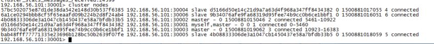 redis_cluster_nodes